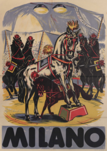 Milano Pferde - Rolf Teichmann